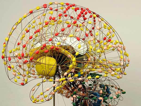 modellino cervello