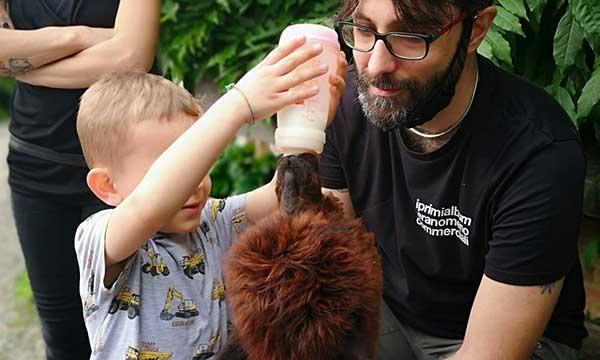 bambino allatta con biberon alpaca