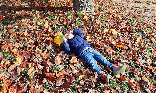 bambino steso sulle foglie autunnali