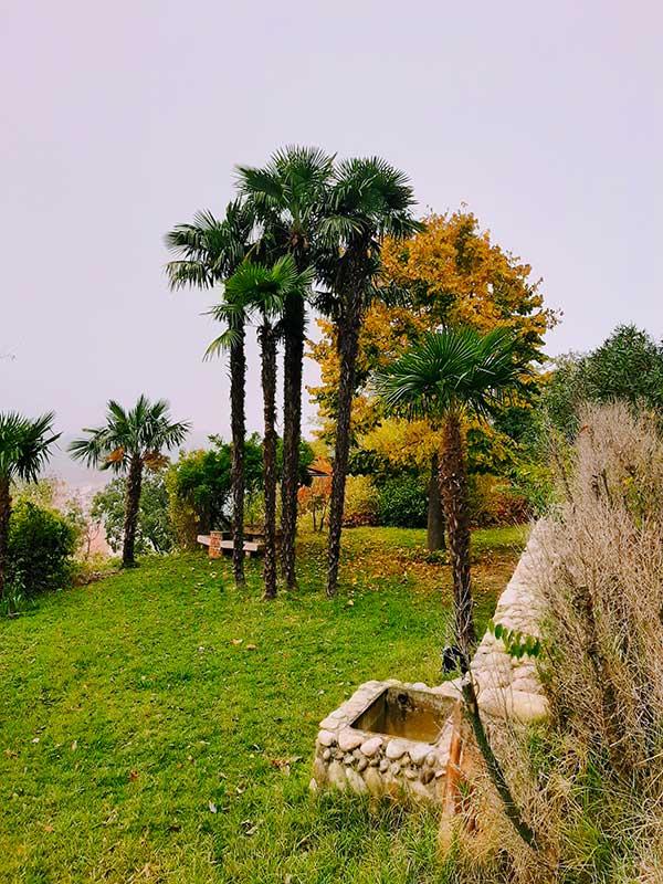 Castello di Monteu Roero giardino