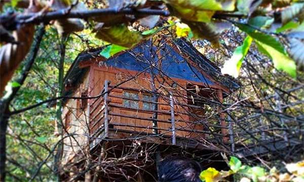 casa sull'albero in piemonte