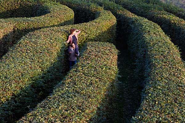 castello di Masino labirinto Piemonte