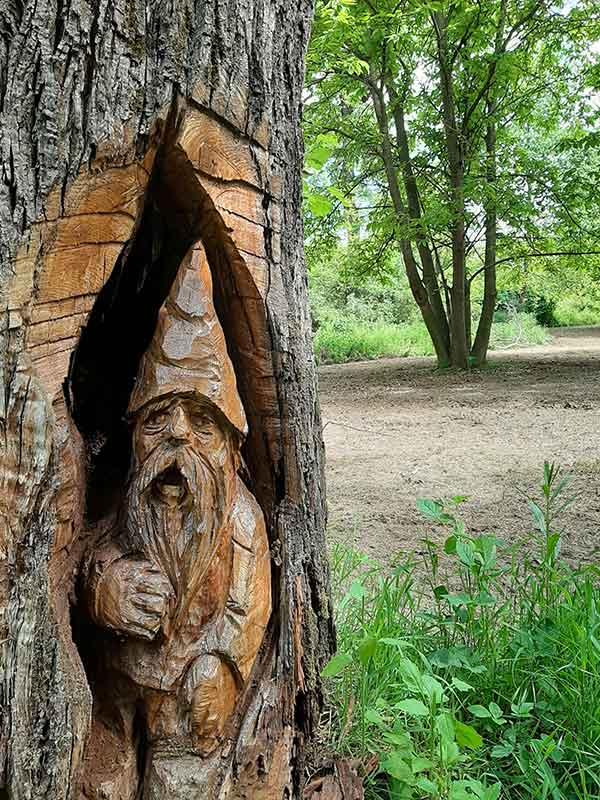 gnom iscavati nel legno