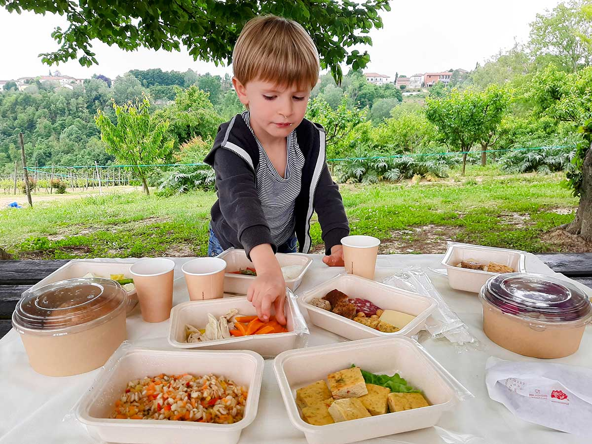 bambino picnic