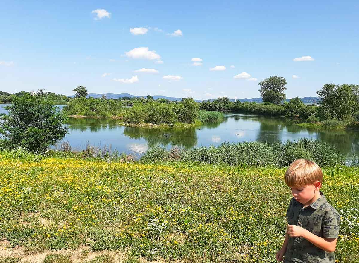 bambino al parco laghetti Falchera