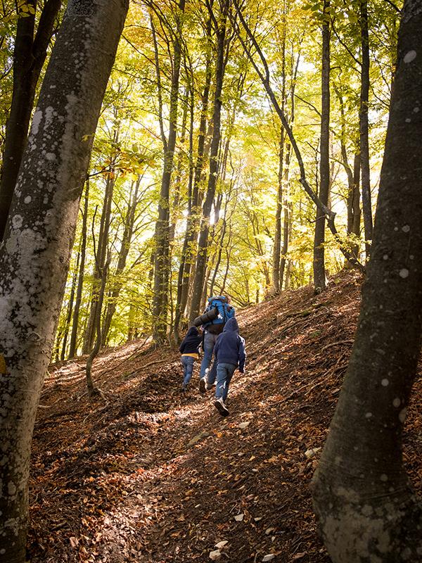 Camminata sul Monte Ebro. Famiglia sul sentiero in salita nel bosco