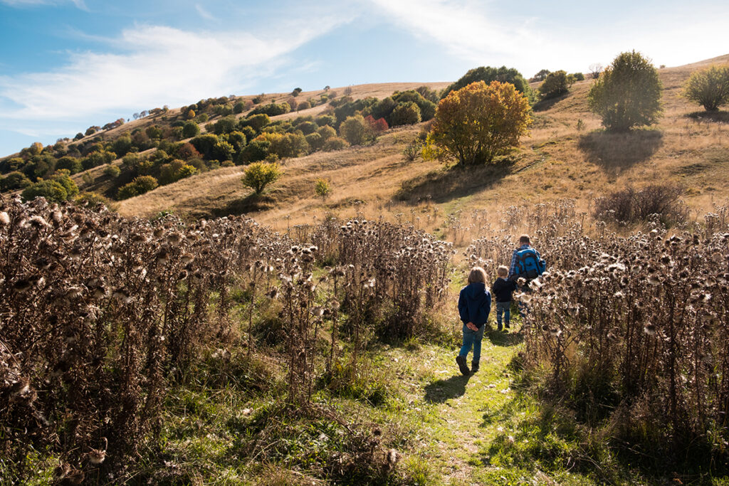 papà e bambini camminano sul sentiero nel prato in autunno